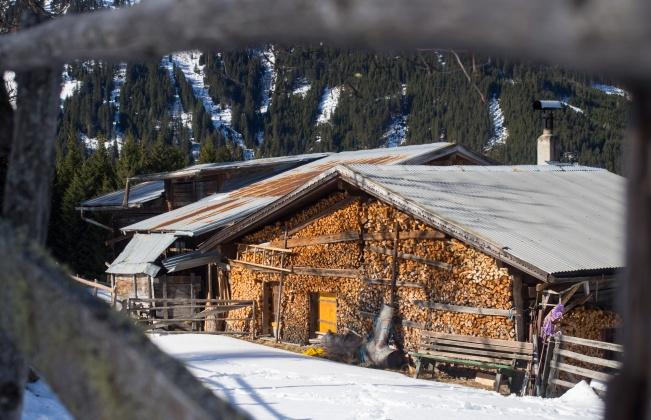Hütte der Weindleraste mit Brennholz an der Wand bis zum Dach hinauf