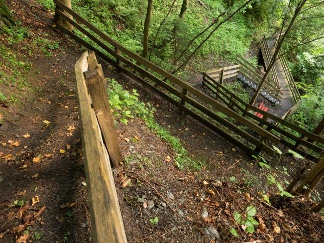 Steig im Wald mit Geländer