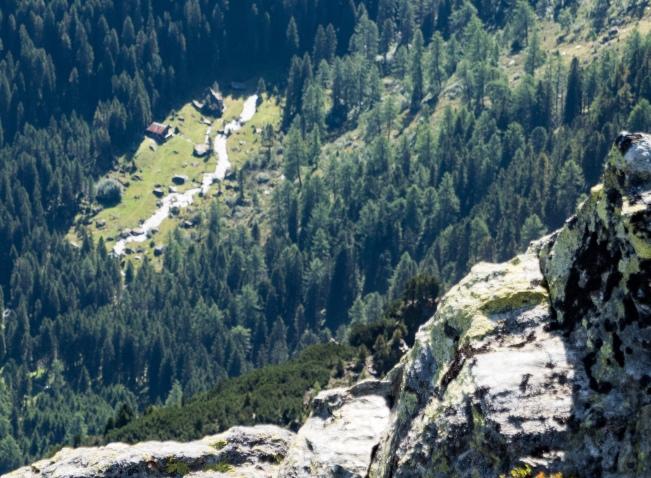 Blick von oben auf die Waldlichtung von Schwarzbrunn