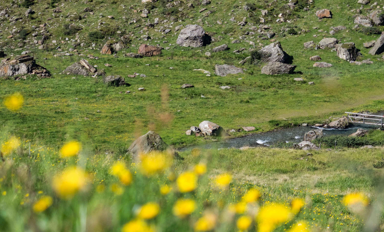 Der Voldertalbach unterhalb der Vorbergreise