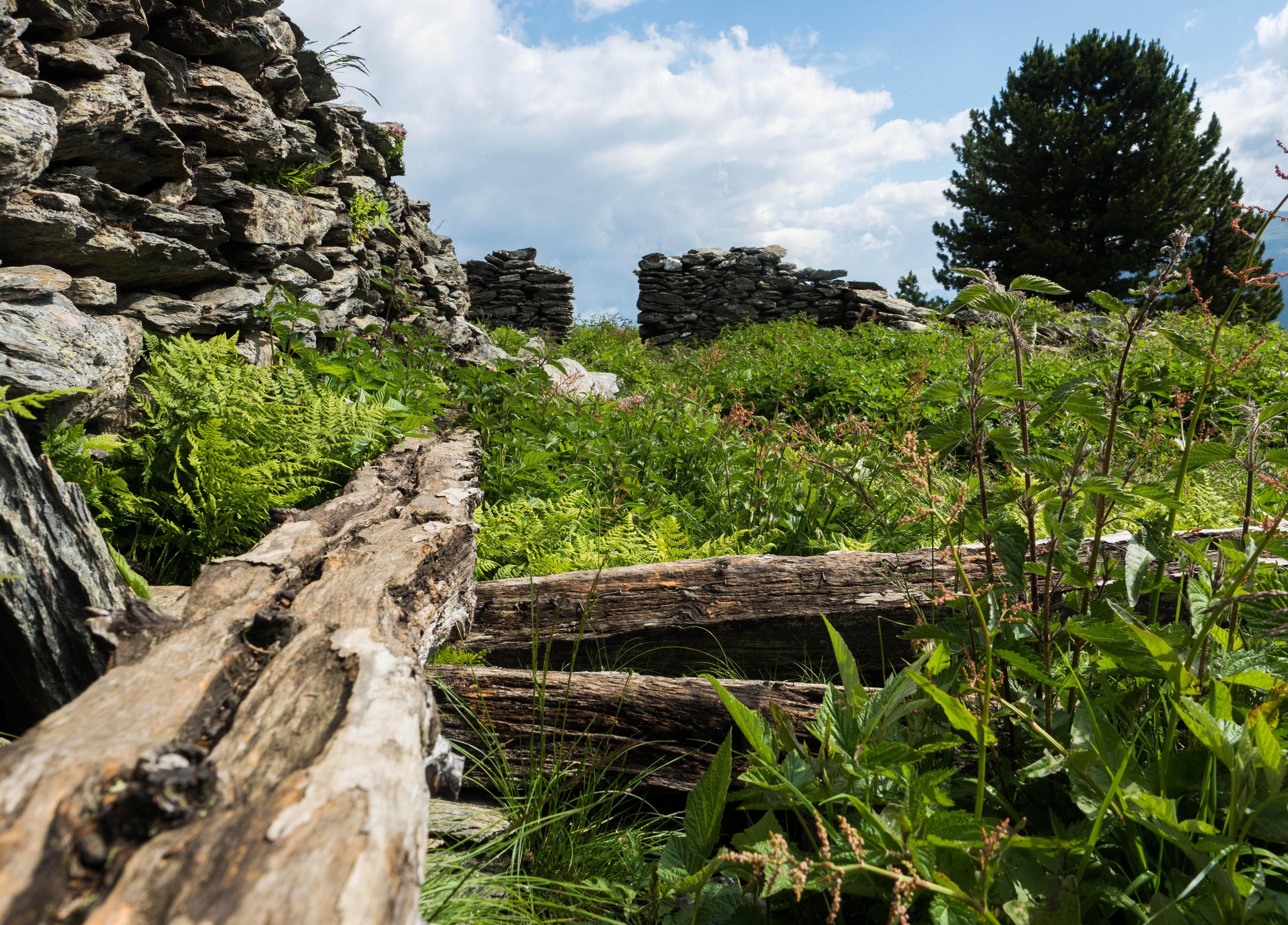 Reste der Almhütte am Stalsinsalm-Oberleger