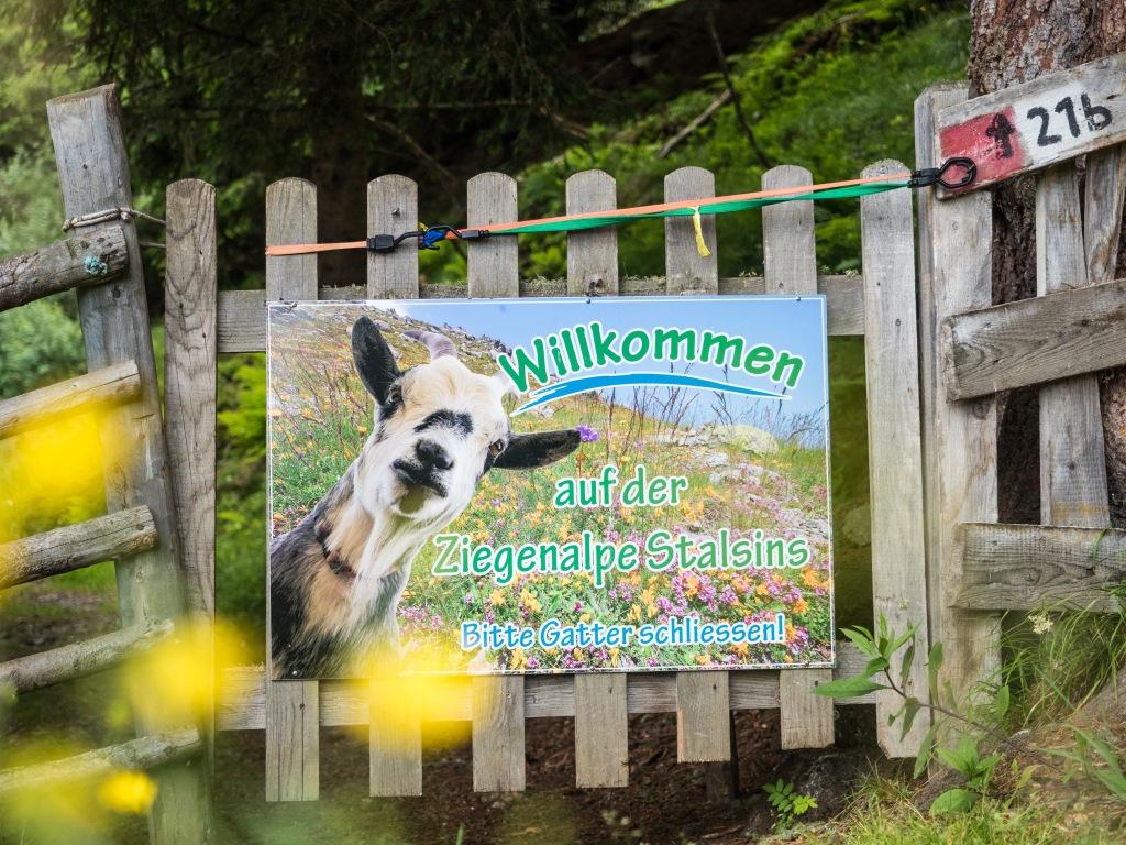 Willkommensschild für Wanderer auf der Ziegenalpe Stalsins