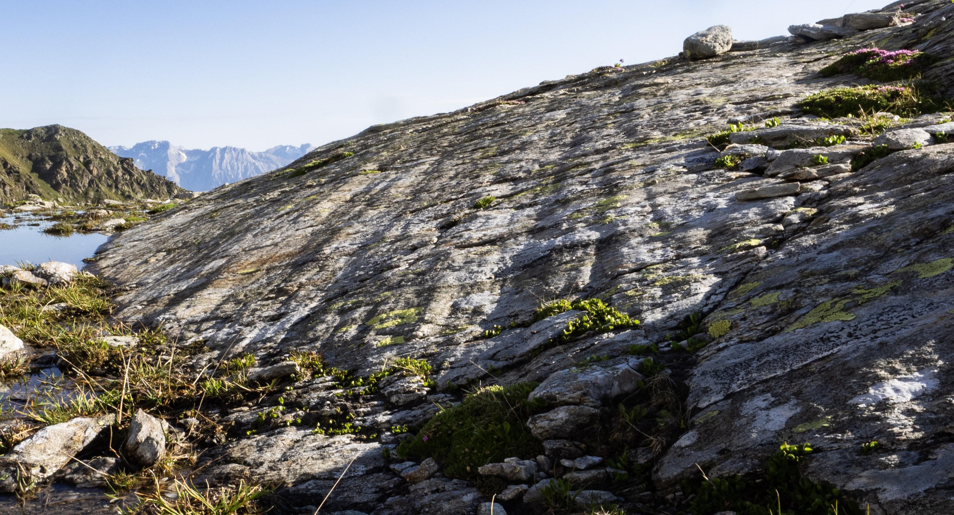 Gletscherschliff im Gamskar unterm Rosenjoch