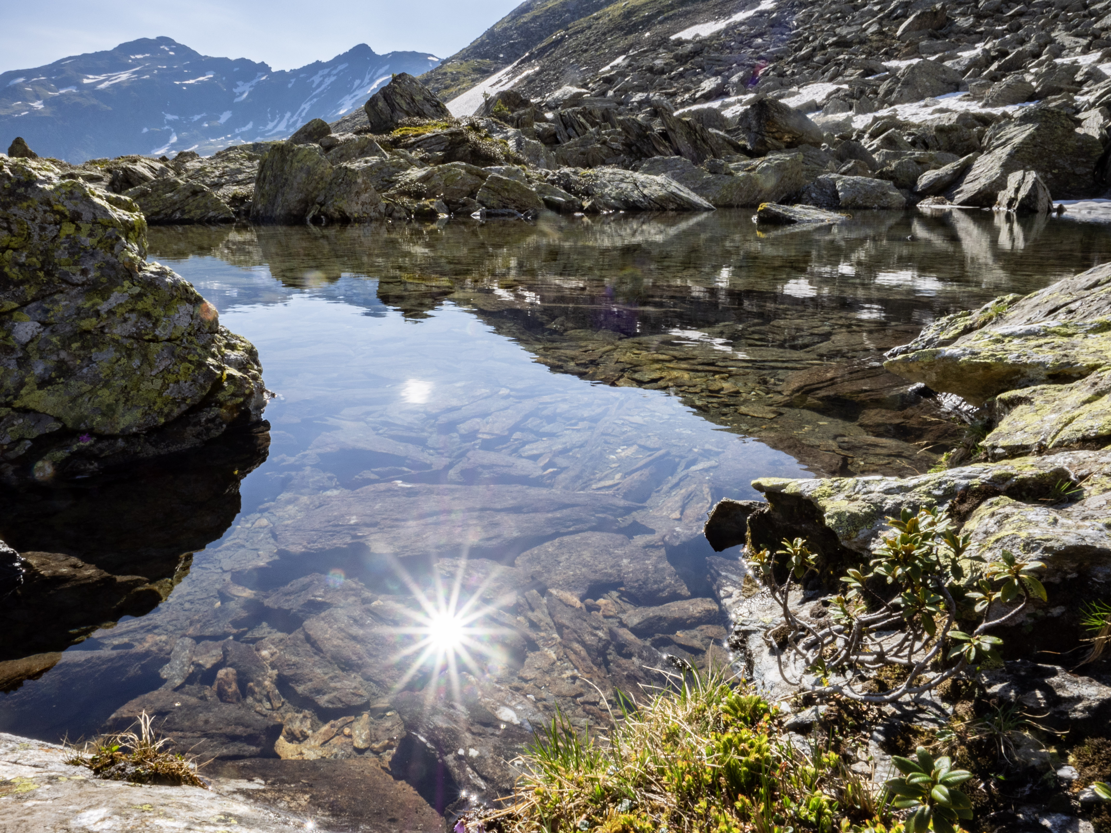 Sonne spiegelt sich in einer Lacke im Gamskar