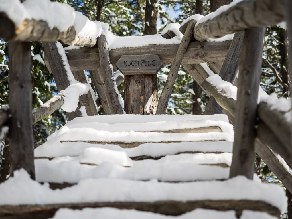 Kugelwald im Schnee